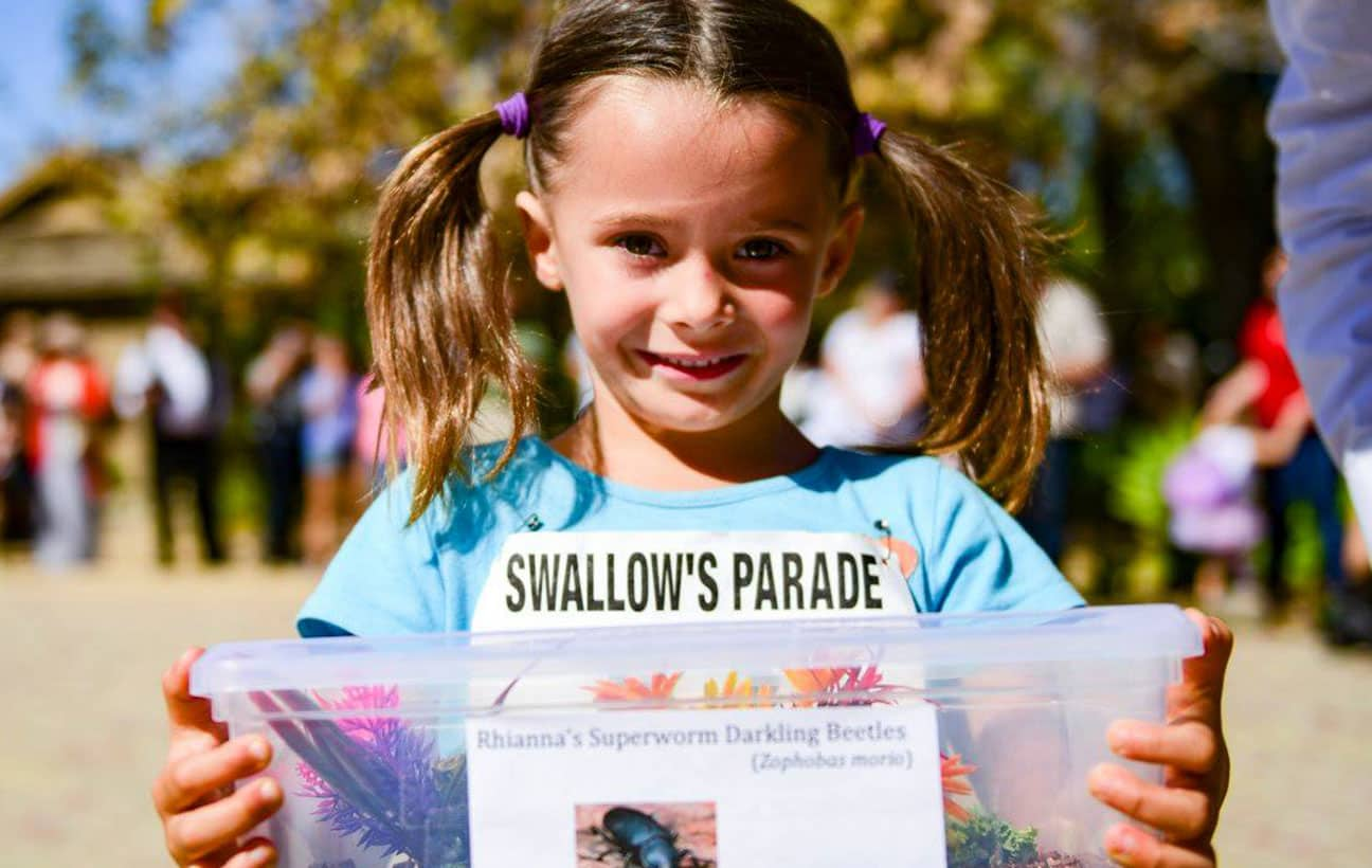 Swallow's Day Parade
